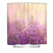 First Light Shower Curtain by Amy Tyler