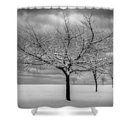 First Snow Shower Curtain by Randy Hall