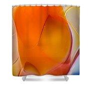 Fleeting Shower Curtain by Omaste Witkowski