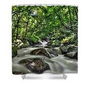 Flooded Small Stream  Shower Curtain by Dan Friend