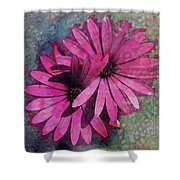 Floral Fiesta  Shower Curtain by Variance Collections