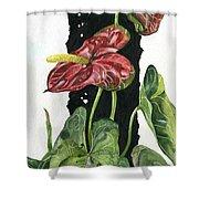 Flower Anthurium 01 Elena Yakubovich Shower Curtain by Elena Yakubovich
