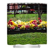 Flower Bed Shower Curtain by Holly Blunkall
