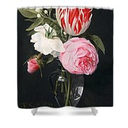 Flowers In A Glass Vase Shower Curtain by Daniel Seghers