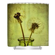 fly away Shower Curtain by Priska Wettstein