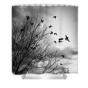 Flying Birds Shower Curtain by Elena Elisseeva