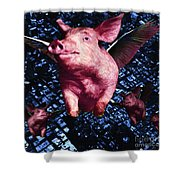 Flying Pigs Over San Francisco - square Shower Curtain by Wingsdomain Art and Photography