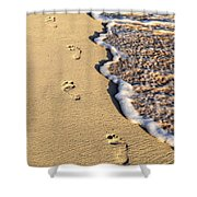 Footprints On Beach Shower Curtain by Elena Elisseeva