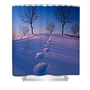 Footsteps Shower Curtain by Cale Best