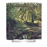For A Time You Were Mine Shower Curtain by Laurie Search