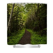 Forest Beckons Shower Curtain by Mike Reid