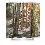 Forest for the Trees Shower Curtain by Jeff Kolker