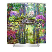 Forest of Light Shower Curtain by Jane Small