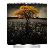 Forever You Shower Curtain by Brett Pfister