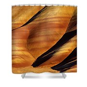Fossilscape Shower Curtain by Inge Johnsson