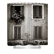 Four Windows Shower Curtain by Dave Bowman