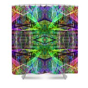 Fourth Dimension ap130511-22 Shower Curtain by Wingsdomain Art and Photography