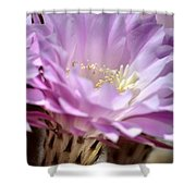 Fragile Beauty Shower Curtain by Deb Halloran