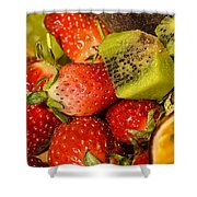 Fresh Fruit Salad Shower Curtain by Tomi Junger