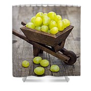 Fresh Green Grapes In A Wheelbarrow Shower Curtain by Aged Pixel