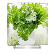Fresh Herbs In A Glass Shower Curtain by Elena Elisseeva