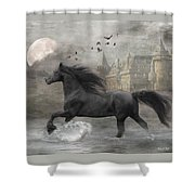 Friesian Fantasy Shower Curtain by Fran J Scott
