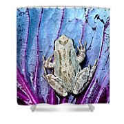 Frog On Cabbage Shower Curtain by Jean Noren