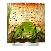 Froggy Heaven Shower Curtain by Holly Kempe