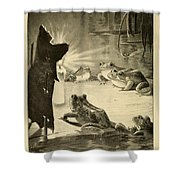 Frogs And Candle Shower Curtain by Philip Ralley