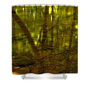 From River Rocks To Forest Reflections Shower Curtain by Adam Jewell