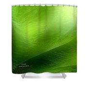 Fronds Shower Curtain by Carol Cavalaris