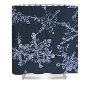 Frost Crystal On Glass Kodiak Isl Shower Curtain by Marion Owen