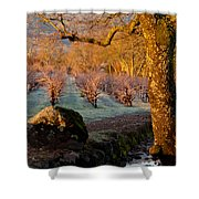 Frost In The Valley Of The Moon Shower Curtain by Bill Gallagher