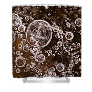 Frozen Bubbles Shower Curtain by Anne Gilbert