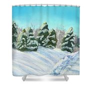 Frozen Sunshine Shower Curtain by Arlene Crafton