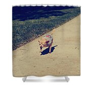 Full Speed Ahead Shower Curtain by Laurie Search