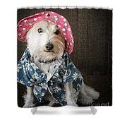 Funny Doggie Shower Curtain by Edward Fielding