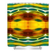 Fury Pattern 5 Shower Curtain by Amy Vangsgard