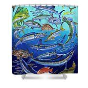 Gamefish Collage In0031 Shower Curtain by Carey Chen
