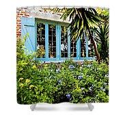 Garden Window DB Shower Curtain by Rich Franco