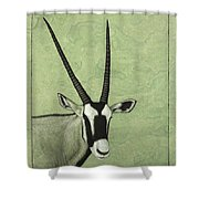 Gemsbok Shower Curtain by James W Johnson