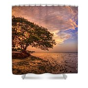 Gentle Whisper Shower Curtain by Marvin Spates
