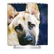 German Shepherd - Soul Shower Curtain by Sharon Cummings