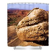 Glacial Erratic Shower Curtain by Adam Jewell