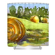 Golden Bales In The Morning Shower Curtain by Kip DeVore