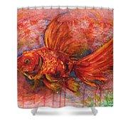 Goldfish Shower Curtain by Zaira Dzhaubaeva