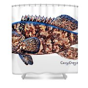Goliath Grouper Shower Curtain by Carey Chen