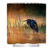 Goliath Heron With Sunrise Over Misty River Shower Curtain by Johan Swanepoel
