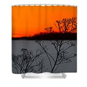Gone Is The Sun Shower Curtain by Rachel Cohen
