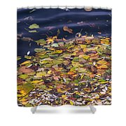 Gone With The Water Shower Curtain by Alexander Senin